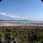 海辺 (1pic)